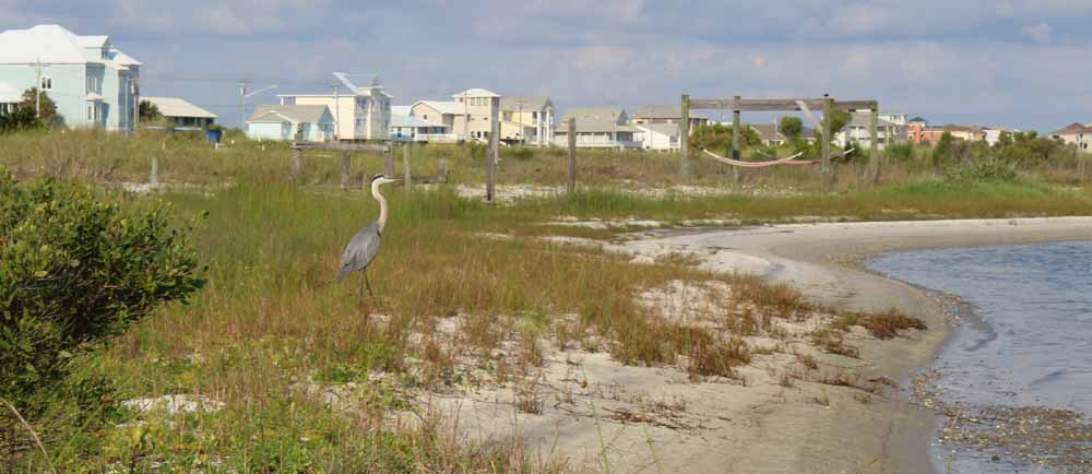Little Lagoon on the west beach of Gulf Shores, Alabama is a quiet place to stay